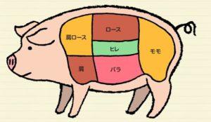 豚肉引用画像
